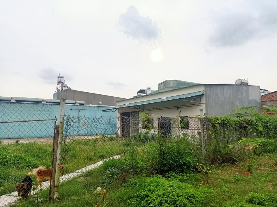 Bán nhà xưởng Võ Văn Vân, Vĩnh Lộc B, Bình Chánh, 856m2, xe tải, giá chỉ 14,6 tỷ