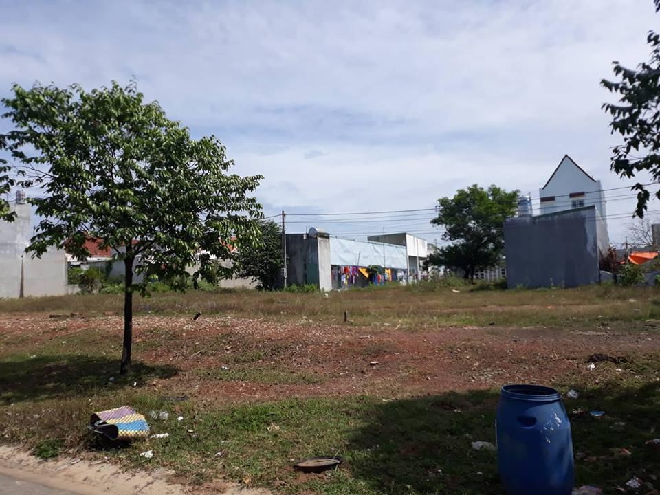 Gđ mình cần bán nhanh lô đất 300m2 gần trường tiểu học và chợ dân sinh với giá rẻ