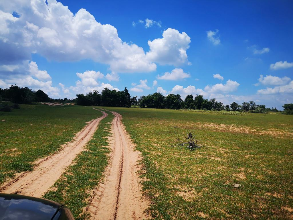 Bán đất Bình Thuận nông nghiệp giá rẻ, liền kề sát biển, tiềm năng phát triển lớn, MKNA