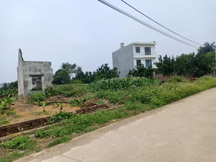 Đất khu công nghệ cao Hòa Lạc 299m2 thôn 7 Phú Cát gần quốc lộ 21, Quốc oai