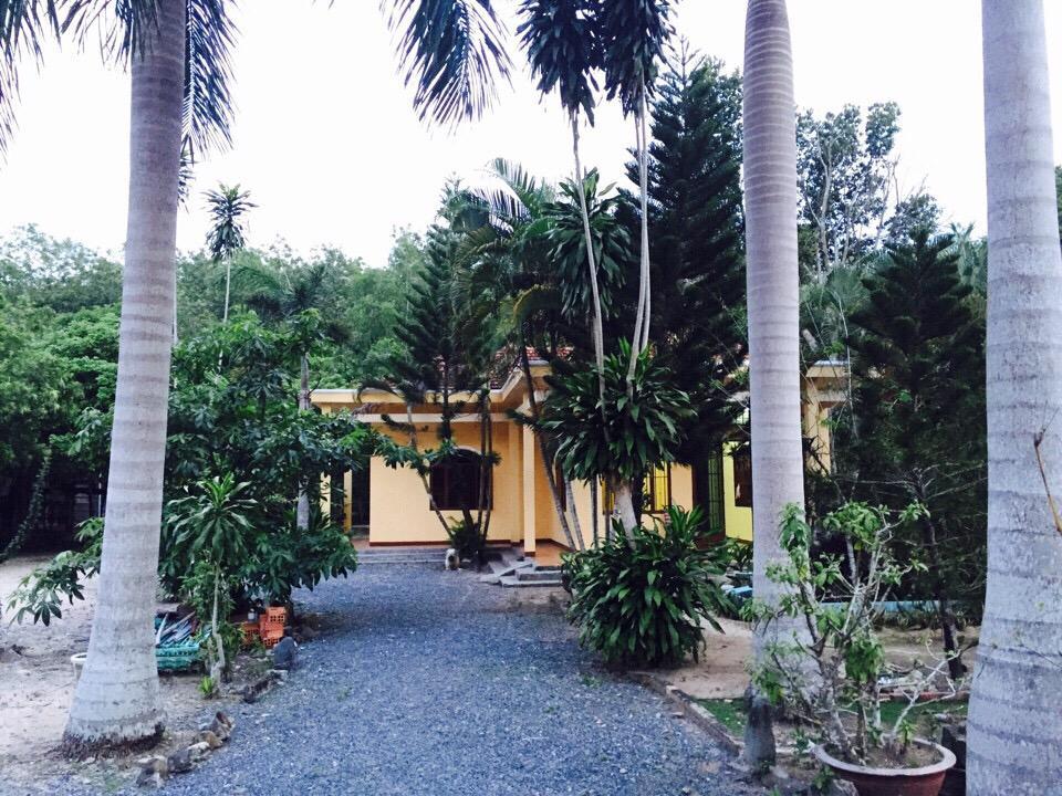 Bán biệt thự vườn mini 64 đường D436 cây trắc xã Phú hoà đông