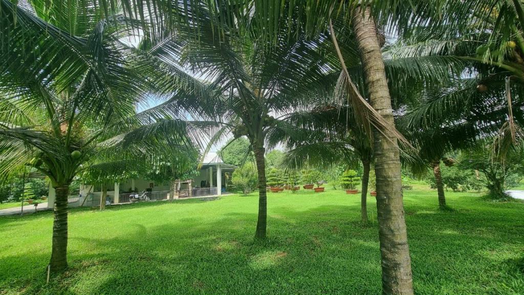 Bán nhà vườn nghỉ dưỡng 2 ha , Thạnh Phú, Vĩnh Cửu, Đồng Nai