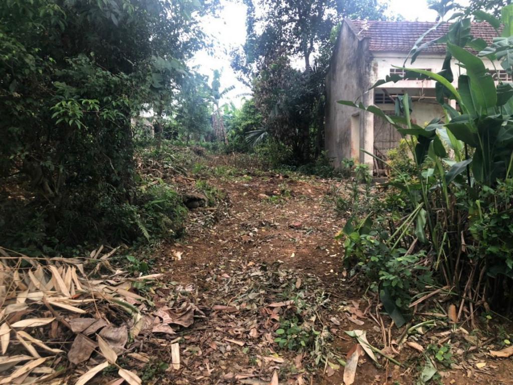 Chính chủ cần bán gấp lô đất 1190m2 tại Thôn 9, Xã Ba Trại, Ba Vì, Hà Nội.LH Thu Hương: 0975349726