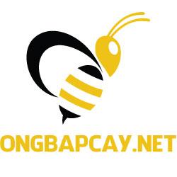 logo_vuong_ongbapcay-1608716505.jpg