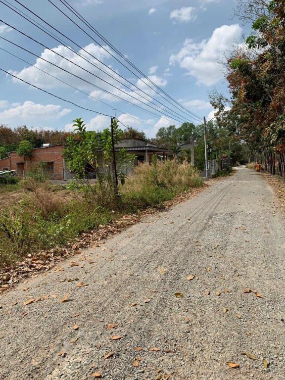 Chính chủ bán gấp đất Hòa Lợi, sổ sẵn, thổ cư xây dựng tự do, gần TP Mới, KCN Visip 2