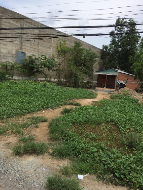 Đất đường bên tông 4m gần chợ Tân Bửu Bến Lức Long An: 5x31 - giá 910 triệu