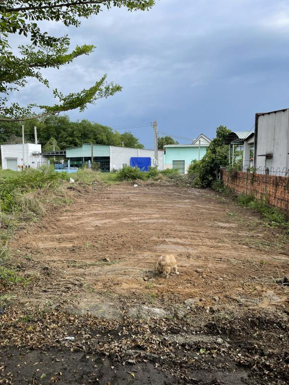 Dịch covid làm ăn thua lỗ chính chủ sang rẻ lại đất 300m và căn nhà c4 mới xây