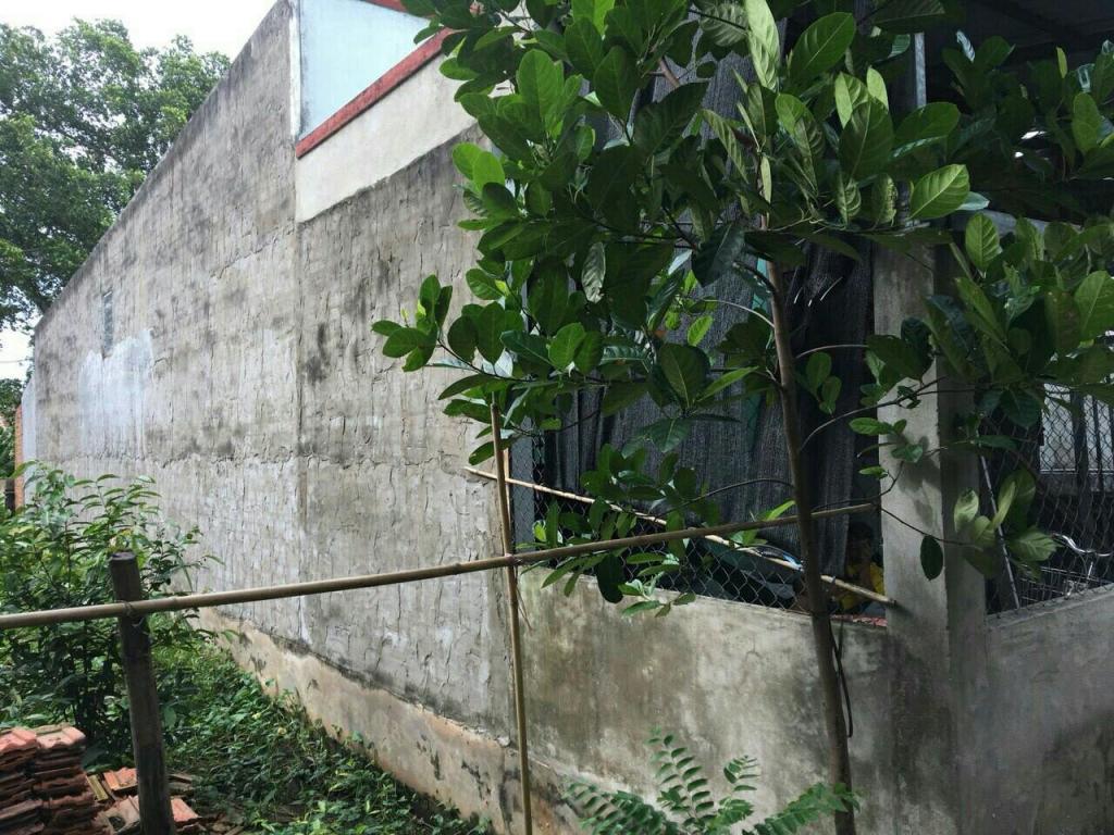 Bán đất thổ cư gần chợ Ấp 4 xã Lương Bình, huyện Bến Lức, tỉnh Long An, 113m2, chỉ 850 triệu.