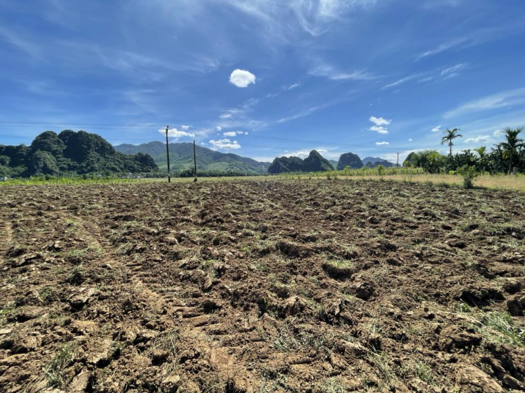 hót hót chính chủ gửi 1200m2 đất tại kim bôi tỉnh HÒA BÌNH